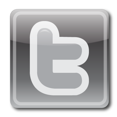 Twitter Logo Small