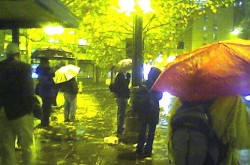 Umbrella in Seattle